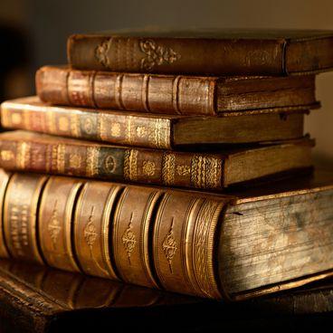 Dansk litteraturs kanon